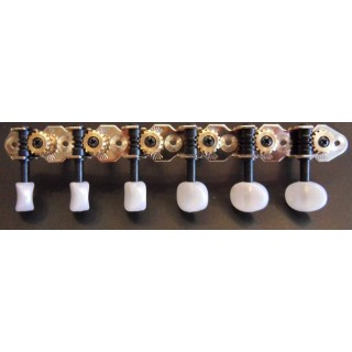Machineheads folk guitar 12 str. SEV -F12-01BOP