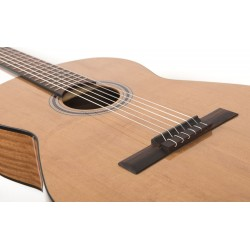 Classical guitars (5)
