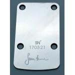Sever Neck Pressure Plate St. Steel Polished