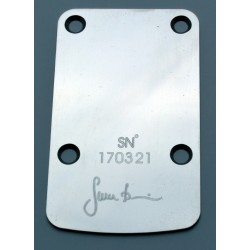Neck plates & control plates (2)
